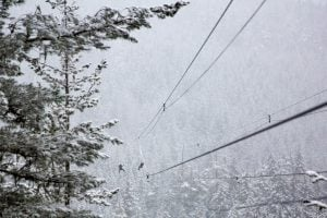 Winter Begins In Whistler This November - WVH Management